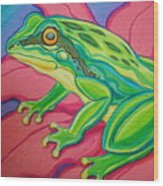 Frog On Flower Wood Print