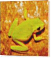 Frog On The Wall Wood Print