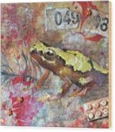 Frog Prince Wood Print by Jennifer Kelly