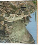Frog Reflection Wood Print