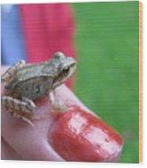 Frog The Prince Wood Print