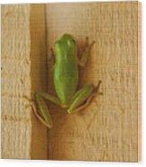 Froggy Wood Print