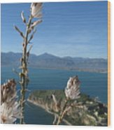 From Atop Nafplion Wood Print