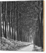 From Bruges To Dam Wood Print