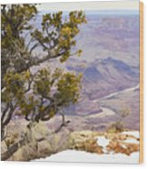 From Desert View Wood Print