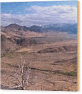 From Monitor Pass Wood Print