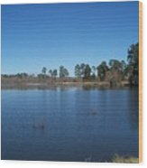 From The Bank Of The Lake In Eunice, Louisiana Wood Print