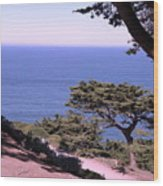 From The Cliff Of Lands' End 02 Wood Print