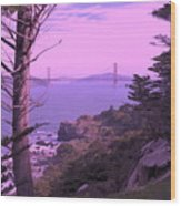 From The Cliff Of  Lands End 06 Wood Print