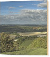 From The Downs To The Weald Wood Print