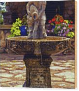 From The Fountain Wood Print