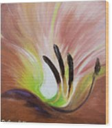 From The Heart Of A Flower Brown 3 Wood Print