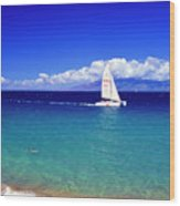 Maui Hawaii Frommer's 2000 Maui Cover Wood Print