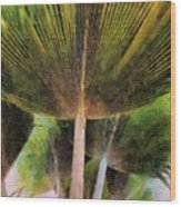 Frond Wood Print