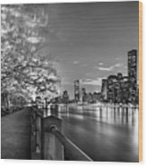 Front Row Roosevelt Island Wood Print