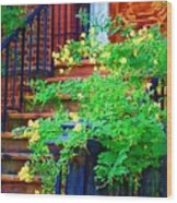 Front Stoop Wood Print