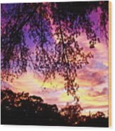 Front Yard Sunset 2 Wood Print