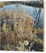 Frost Along Nippersink Creek In Glacial Park At Sunrise Wood Print