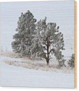 Frost . Fog And Twenty Below ... Montana Art Photo Wood Print