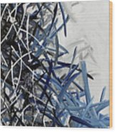 Frost Lined Intensions Wood Print