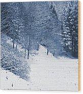 Frost Path Wood Print