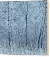 Frosted Beauty Wood Print