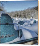 Frosted Paddleboats Wood Print