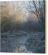 Frosted Riverbank Wood Print