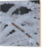 Frosted Twigs Wood Print