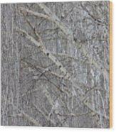 Frosty Birch Tree Wood Print