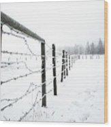 Frosty Fenceline Wood Print