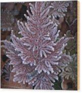 Frosty Fern Christmas Wood Print