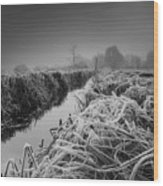 Frosty Field Wood Print