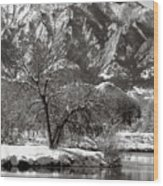 Frosty Flatirons 2 Wood Print