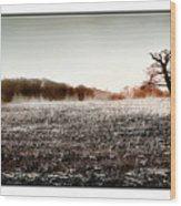 Frosty Landscape Wood Print