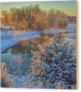 Frosty Morning Wood Print