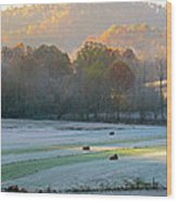 Frosty Morning On The Farm Wood Print