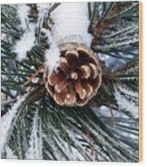 Frosty Pine Cone Wood Print