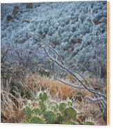 Frosty Prickly Pear Wood Print