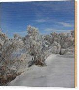 Frosty Shrubs Along The Hudson Wood Print