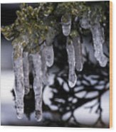 Frozen 4 Wood Print