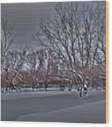 Frozen At The Creek's Edge Wood Print