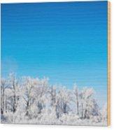 Frozen Beauty  Wood Print