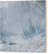 Frozen Bubble Wood Print
