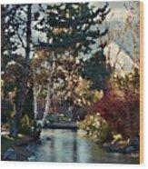 Frozen Creek II Painting Wood Print