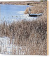 Frozen Dock Wood Print