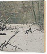 Frozen Fallen Wide Wood Print