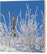 Frozen Fence Post Wood Print