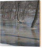 Frozen Floodwaters Wood Print