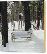 Frozen Glider Wood Print